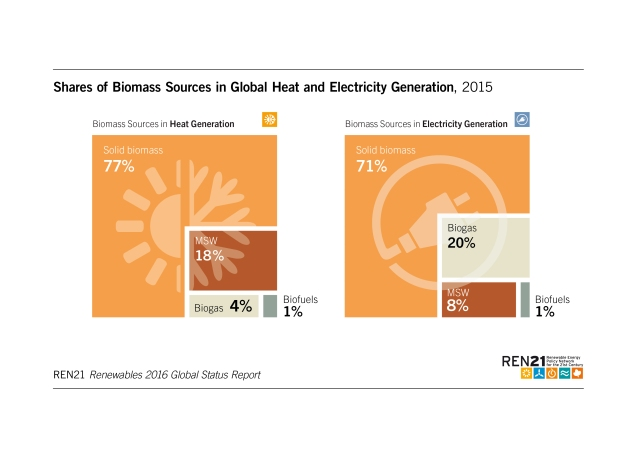 share-of-biomass-in-electricity-and-heat-generation