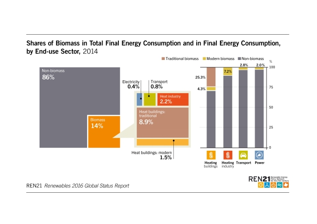 shares-of-biomass-in-total-fianl-energy-consumption